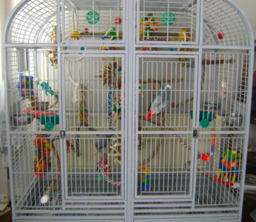6432 cage for grey